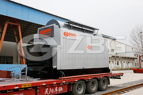DZL Packaged Biomass Steam  Boiler